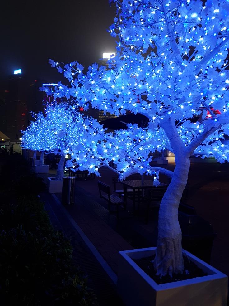20170318_192638 Taste of HK Tree